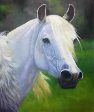 Oil painting for sale:horses-034