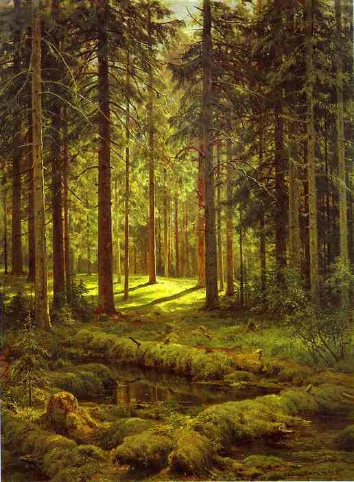 Oil painting:Coniferous Forest. Sunny Day. 1895