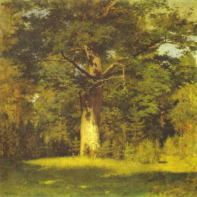 Oil painting:Oak. 1880