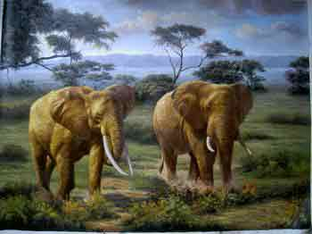 Oil painting for sale:elephant-016