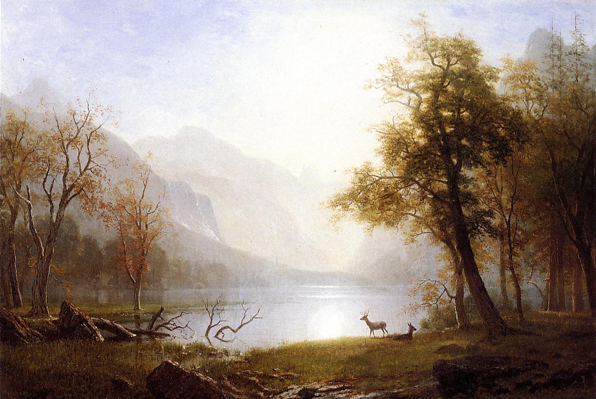 Valley in Kings Canyon