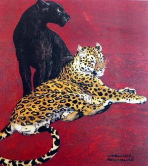 Jaguar and Black Panther