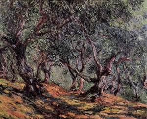 Olive Trees in Bordighera 1884