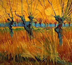 Pollard Willows With Setting Sun 1888