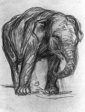 Elephant (Elefant) 1907
