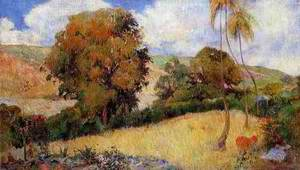 Meadow In Martinique