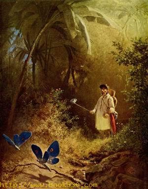 A Butterfly Catcher