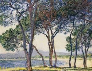 Trees by the Seashore at Antibes 1888