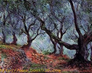 Grove of Olive Trees in Bordighera 1884