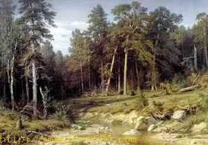 Pine forest. A mast forest in Vjatsky province 1872
