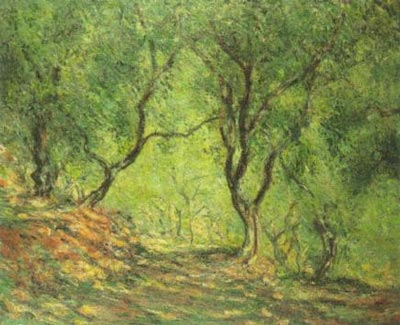 Olive Grove in the Moreno Garden