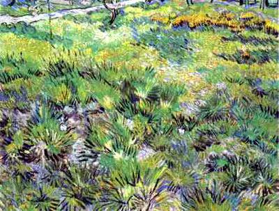Meadow in the Garden of Saint-Paul Hospital