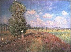 Summer, Field of Poppies