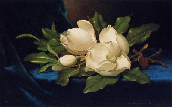 Martin Johnson Heade - Giant Magnolias on a Blue Velvet Cloth