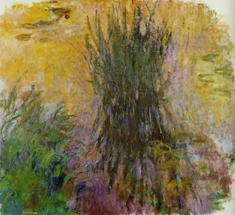 Claude Monet - Water-Lilies 1