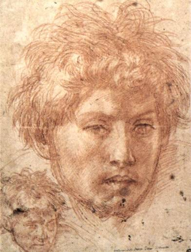 Andrea del Sarto - Head of a Young Man