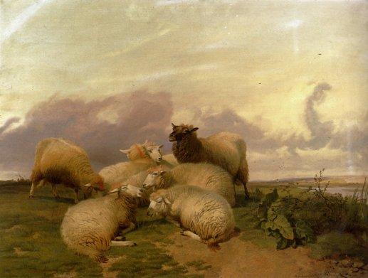 Thomas Sidney Cooper - Sheep In Canterbury Water Meadows