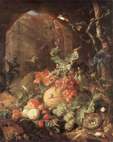 Still-life with Bird-nest
