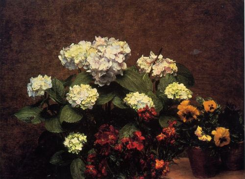 Hydrangias, Cloves and Two Pots of Pansies