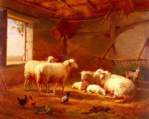 Sheep With Chickens And A Goat In A Barn