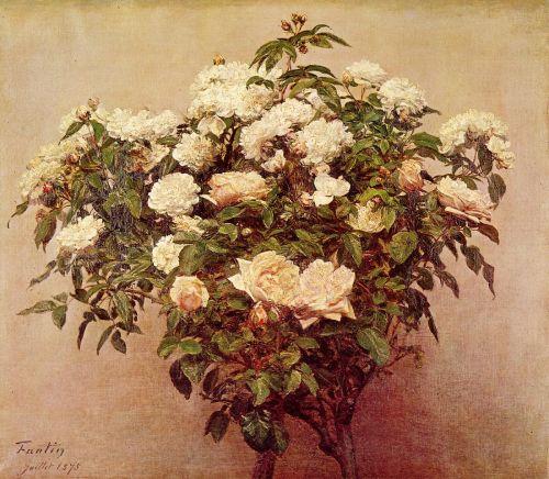 Rose Trees - White Roses