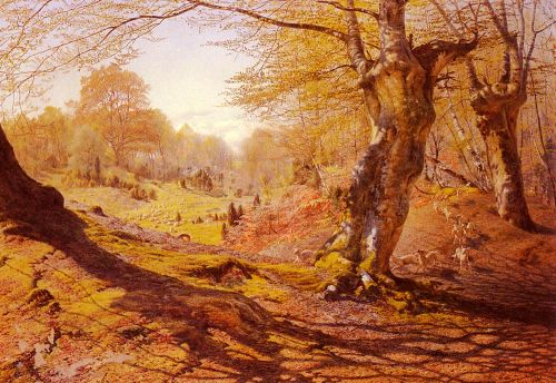 Seasons In The Wood - Spring, The Outskirts Of Burham Wood