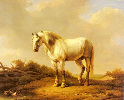 A White Stallion In A Landscape