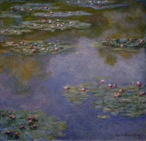 Water-Lilies 7