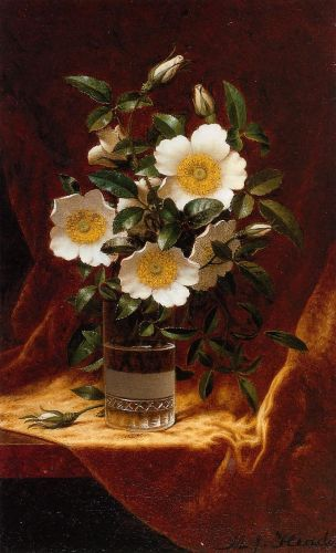 Cherokee Roses in a Glass