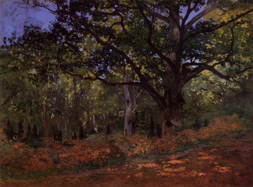 The Bodmer Oak, Fontainebleau