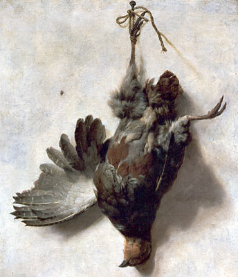 Dead Partridge, undated