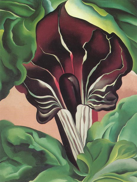Jack in the Pulpit II, 1930