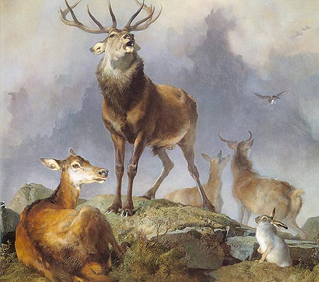Scene in Braemar - Highland Deer, 1857