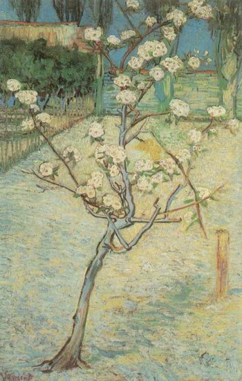 Blossoming Pear Tree, Arles: April, 1888