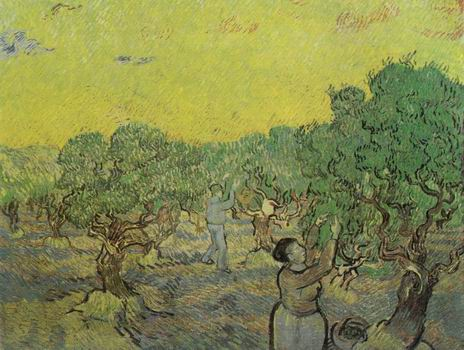 Olive Grove with Picking Figures,Saint R