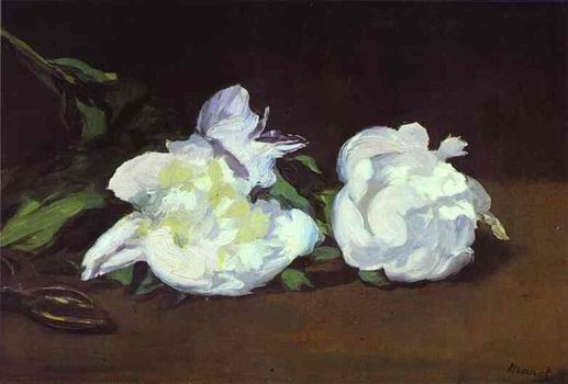 Branch of White Peonies and Shears. 1864