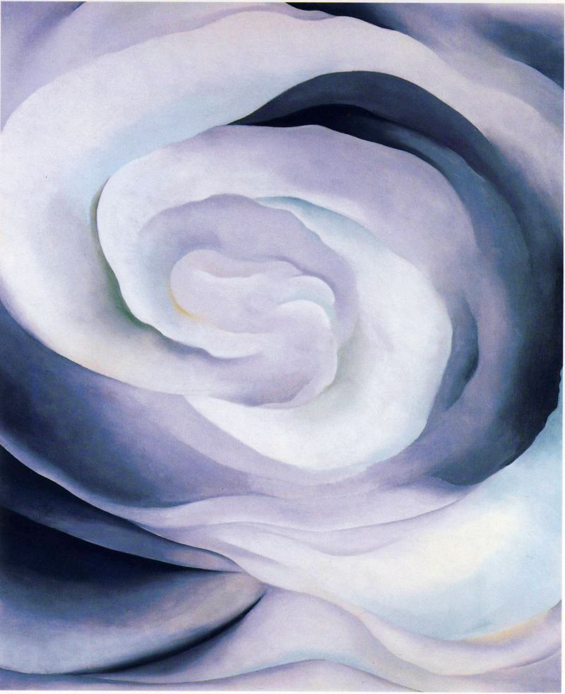 Abstraction, White Rose II