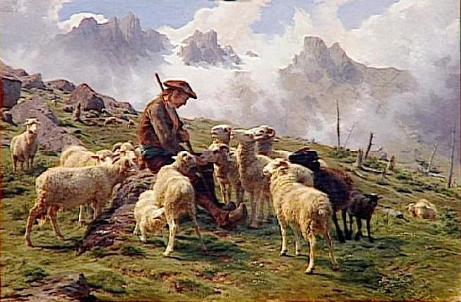 Berger des Pyrenees