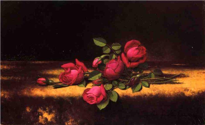 Jaqueminot Roses