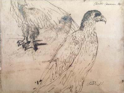 Eagles (mk17)