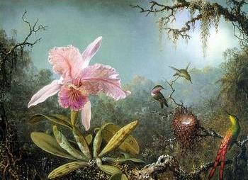Floral, beautiful classical still life of flowers.123