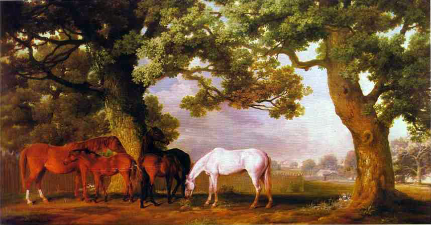 Mares and Foals in a Wooded Landscape
