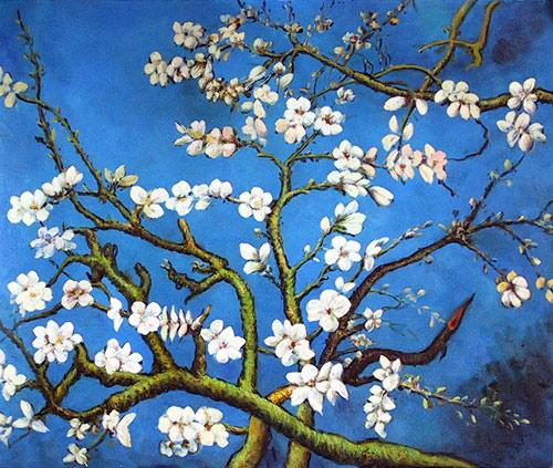 Almond Blossom San Remy