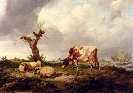 A Cow With Sheep In A Landscape