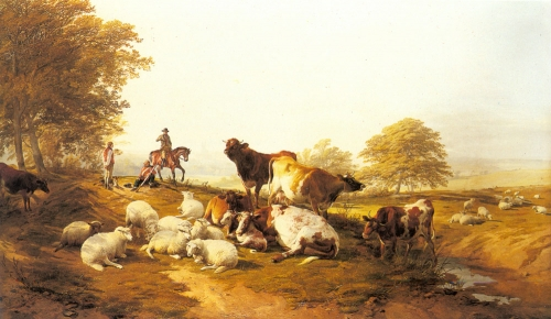 Cattle and Sheep Resting in an Extensive Landscape