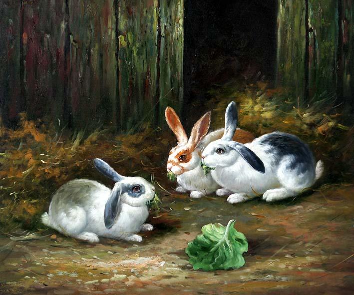 Barn Bunnies