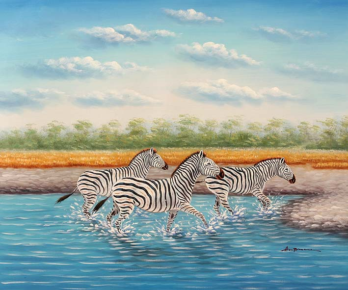 Zebras Wading Through The Water