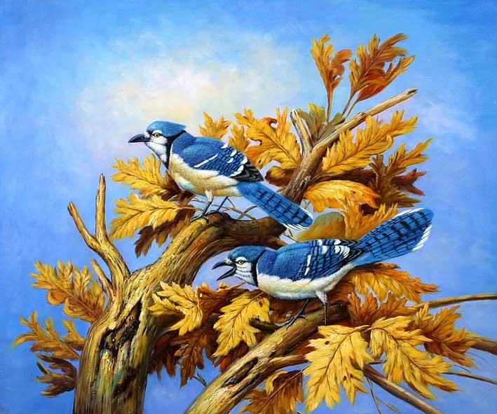 Birds in a Tree Top