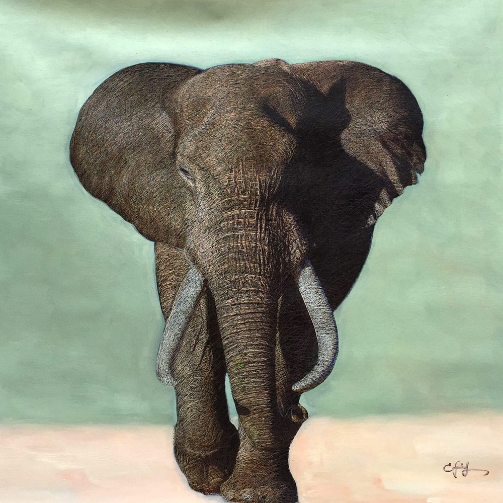 Animal Elephant Wall Art for Home Decoration