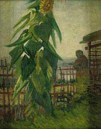 Shelter on Montmartre with Sunflowers, Paris 1887 - Vincent Van Gogh